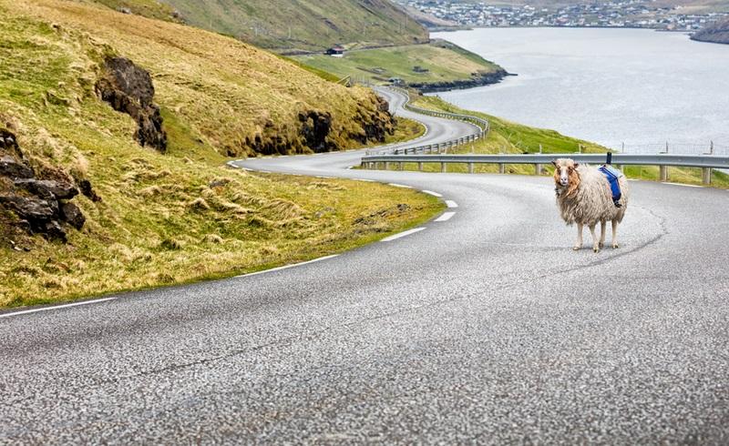 Le Mouton Google Street View
